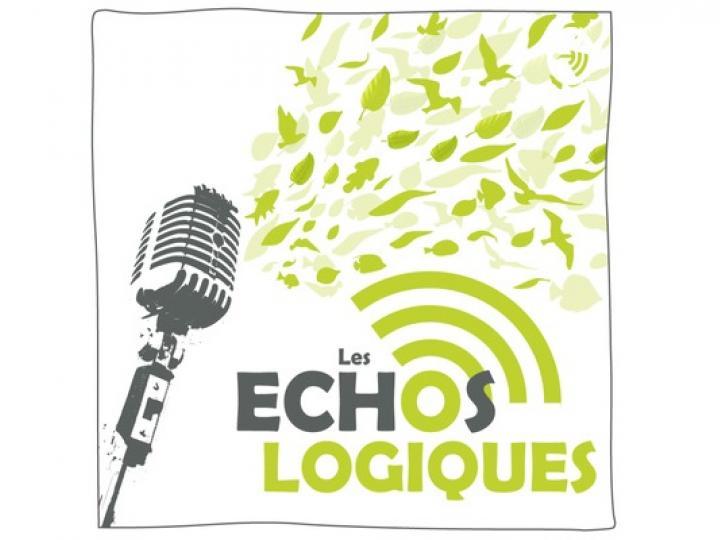 Les Echos-Logiques